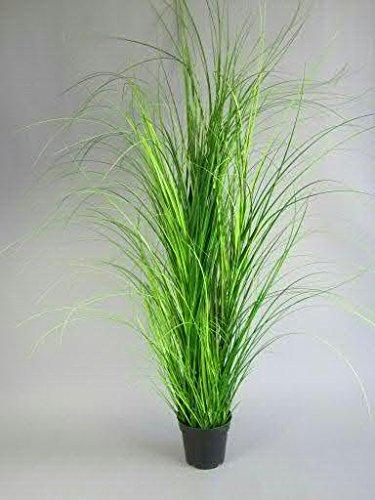 Dekogras im Topf - Künstlich & Naturgetreu - Groß: 150cm - Gras / Grasbüschel / Grasbusch / Grasbündel / Ziegras / Ufergras / Kunstgras getopft - Zeitlose Dekoration - Dekobündel für Bodenvase