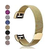 Mornex Kompatibel Fitbit Charge 2 Armband, Milanese Edelstahl Ersatz Klassisch Smart Watch Armbänder, stylishe Zubehörkollektion, Golden