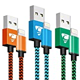 Aioneus Cargador iPhone [MFi Certificado] Cable iPhone 2M 3 Pack Trenzado de Nylon Cable Lightning Compatible con iPhone X 8 8 Plus 7 7 Plus 6s 6s Plus 6 6 Plus 5s 5 SE iPad (Azul, Verde, Naranja)