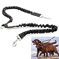 GEZICHTA Bungee Dog Leash,2 in 1 Bungee Double Dog Coupler Lead Buffered Traction Rope,Strong Rubber Band Double Dog Lead for Walking 2 Dogs No Tangle,Double Dog Cat Pet Lead Splitter