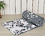 Cotton Comforters Review and Comparison