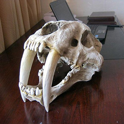 Säbelzahntiger Schädel Replik Skelett Modell Aquarium Dekor ()