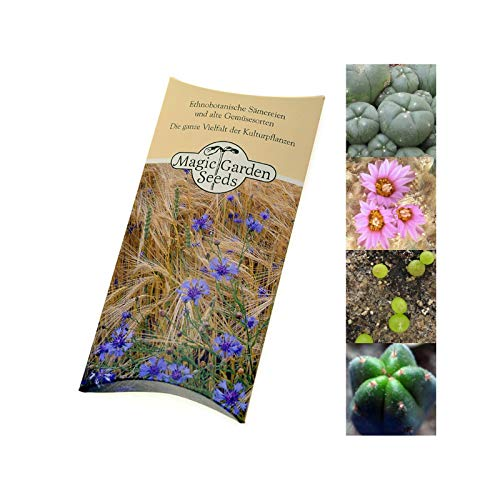 "Kakteen-Saatgut Set:\""Peyote & San Pedro Kaktus\"" je 20 Samen zur Anzucht in schöner Geschenk-Verpackung"