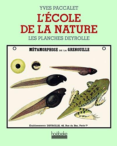 L'école de la nature: Les planches Deyrolle
