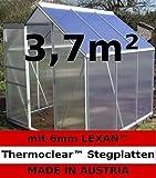 3,7m² ALU Aluminium Gewächshaus Glashaus Tomatenhaus, 6mm Hohlkammerstegplatten - (Platten MADE IN AUSTRIA/EU) mit 1 Fenster von AS-S