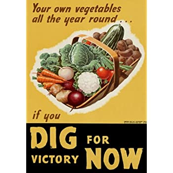 2W89 Vintage WWII Dig For Victory World War 2 WW2 Poster A2 A3