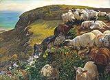 William Holman Hunt nostro inglese coste C1852250gsm lucido arte della riproduzione A3poster
