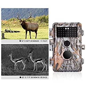 """BlazeVideo 16MP Game Camera HD No Glow Infrared, Trail Hunting Wildlife Animals Cam Motion Sensor Activated Waterproof Night Vision 38pcs IR LED, Take Picture, Video Record, 2.4"""" LCD Screen"""