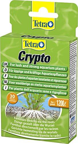 Tetra Crypto Düngetabletten, für üppige und gesunde Wurzelbildung der Wasserpflanzen im Aquarium, 30 Tabletten