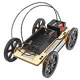 mxjeeio 12cm*8cm*4,4cm Riesenrad 4WD Fahrzeug Spielzeug DIY Car Kit Kinder Pädagogisches Gadget Hobby Geschenk Spielzeug