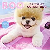 2015 Wall Calendar: Boo The World's Cutest Dog (Calendars 2015)