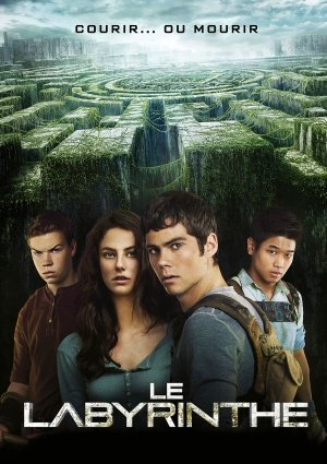 THE MAZE RUNNER – French Imported Movie Wall Poster Print - 30CM X 43CM Brand New