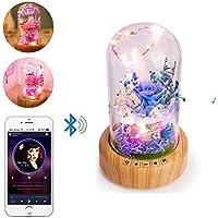 Bluetooth-Lautsprecher Nachtlicht, niceEshop (TM) wiederaufladbare Wunsch Flasche Tischlampe, ewige Blume Mikro-Landschaft... preisvergleich bei billige-tabletten.eu