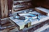 Blau Kariertes Hundehalsband mit weichem Neopren und Schleifen für große, mittelgroße und kleine Hunde (XS 1,5 cm x 25-33 cm x 31 cm, Blau-Braun)