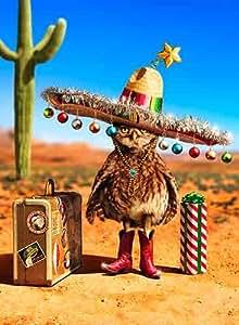 Avanti Carte de Noël, Noël Spirit une petite quantité suffit à chaque utilisation, 10 graines
