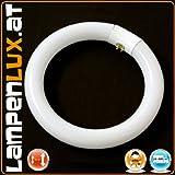 T9 Leuchtmittel Ringlampe Ringröhre Leuchtstoff 40W G10Q rund Kreislampe