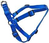 Best Coastal Pet Dog Leash For Large Dogs - Coastal Pet Products DCP6945BLU Nylon Comfort Wrap Adjustable Review