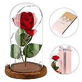 anaoo Rosa de Seda Artificial roja Rosas La Bella y la Bestia con una cúpula de Cristal Sobre una...