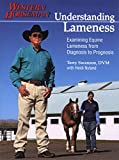 Understanding Lameness: Examining Equine Lameness from Diagnosis to Prognosis