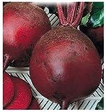 350 Aprox- Semillas Garden Beet Detroit 2 - Beta Vulgaris en su embalaje original Made in Italy - Remolacha