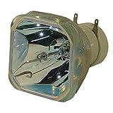 Lutema Platinum Lampe pour Hitachi CP-AW2519NM Projecteur (Ampoule Philips Originale)