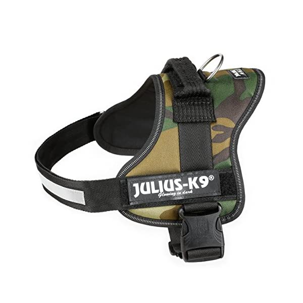 Julius-K9, 162M-BB1, Powerharness 2