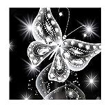 MXJSUA DIY 5d Diamant Peinture Kits Complète perceuse Cristal Rond Strass Broderie Pictures Arts Craft pour Home Décoration Murale Cadeau Papillon Argenté 12x Grande Élongation
