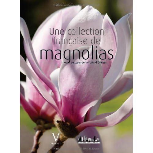 Une collection française de magnolias au coeur de