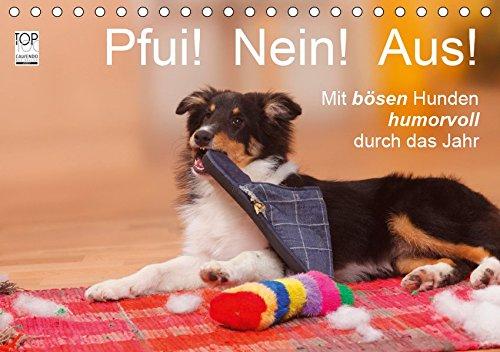 Pfui! Nein! Aus! - Mit bösen Hunden humorvoll durch das Jahr (Tischkalender 2019 DIN A5 quer)
