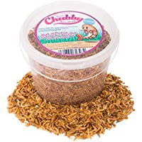 Chubby Mealworms Dried River Shrimp, 3 Litre