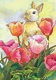 Toland Home Garden Häschen und Tulpe, Bunt