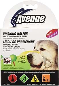 Avenue Licou de Promenade pour Chien de Taille XL/XXL