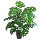 Leaf Blatt-Entwurf UK Artificial Monstera Pflanze, 60cm Monstera