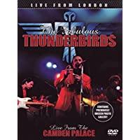The Fabulous Thunderbirds - Live From London