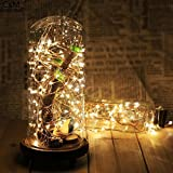 Topfashion+ LED Moon Lights 20 Micro Starry LEDs on Extra Thin Copper Wire,7 Ft (2M) for DIY Wedding Centerpiece or Table Decorations (Warm White),Set of 2
