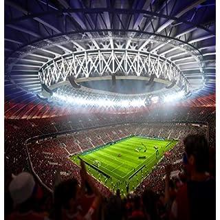 amazing sticker FIFA Football Stadium wall mural 229width and 238 length