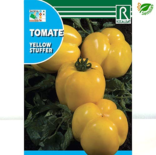 AGROBITS Tomate Yellow Stuffer (0,1 g / 25 Meere APR) - Tomate pimiento amarillo
