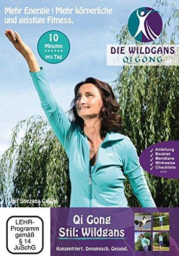 Qigong DVD Stil: Wildgans Typ 1: 10-Minuten Turboprogramm für Sportler, Kopfarbeiter und (geistig) Anspruchsvolle (Geistige Dvd)