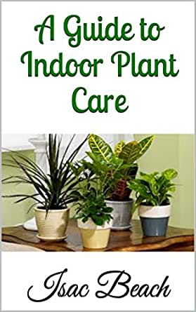 a guide to indoor plant care ebook isac beach