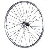 Taylor Wheels 26 pollici ruota posteriore bici doppia parete mozzo Acera argento