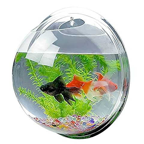Mirror Face Style Acrylic Round Wall Mounted Hanging Fish Bowl