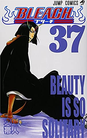 [Bleach 37 Beauty Is So Solitary]