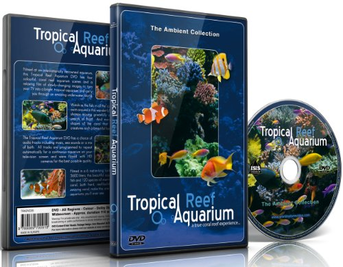 Tropical Reef Aquarium -