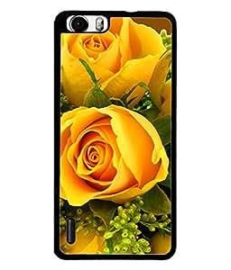 PrintVisa Designer Back Case Cover for Huawei Honor 6 Plus (Beautiful Rose Relationship Love Beauty)