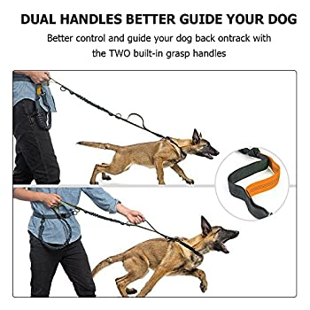 Hände Frei Hundeleine, Gearlifee Einziehbar Reflektierende Nähte Dual Bungees Diy Hundeleinen Mit Gürteltasche, Triangle Traction Belt, Hundefutter Dispenser Für Den Lauf Walking Wandern Training (Orange) 5