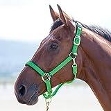 Shires Topaz 387 - Bozal para caballos de nailon, verde, Cob
