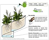 ModulGreen-Pot-pour-plantes-mural-Design-Intrieur-Extrieur-Blanc