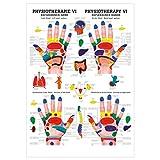 Reflexzonen der Hand - Mini-Poster