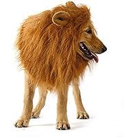 Disfraz de Mascota Perro, León Pelucas Perro Mascotas Ropa Sombrero Disfraz Festival Fiesta Disfraz de Navidad