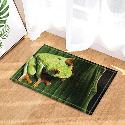 Funky Frosch mit Big Eyes auf Blätter Bad Teppiche rutschhemmend Fußmatte Boden Eingänge Innen vorne Fußmatte Kinder Badematte 39,9x59,9cm Badezimmer Zubehör ()